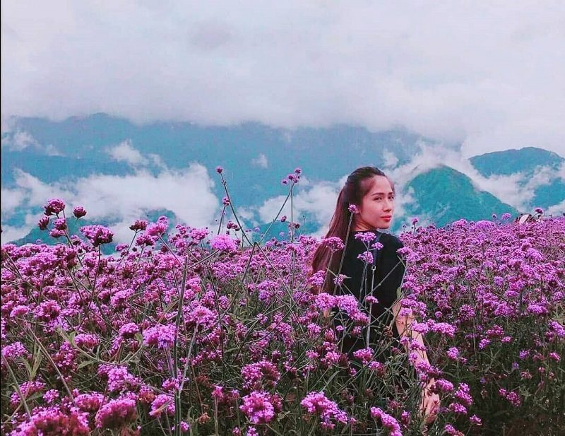 kinh nghiệm du lịch sapa tháng 3